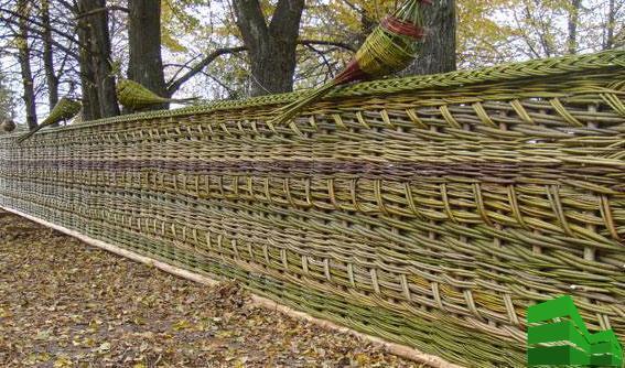 березовое плетение